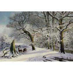 Winter at Leslie