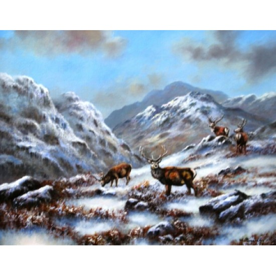 Highland Stags