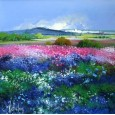 Summer meadows 1